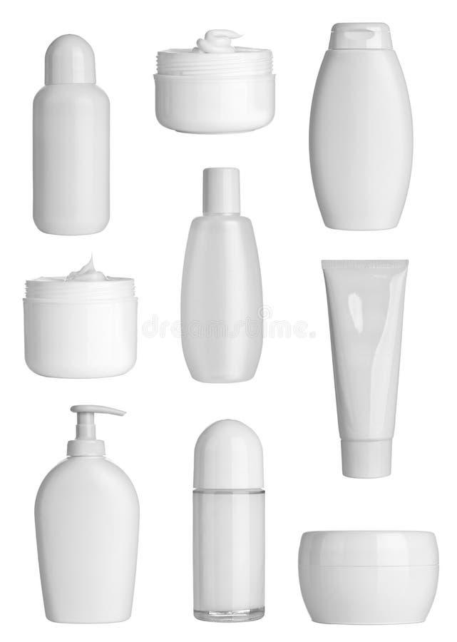 秀丽容器卫生学 库存例证