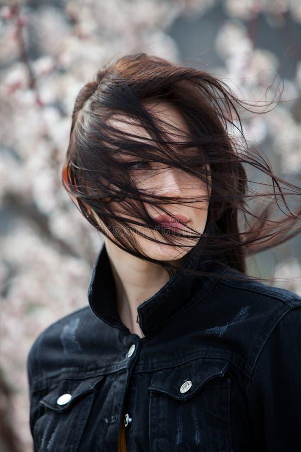 秀丽年轻美丽的深色的女孩时尚画象有长的黑色头发和嫉妒的 女性面孔秀丽画象与 免版税图库摄影
