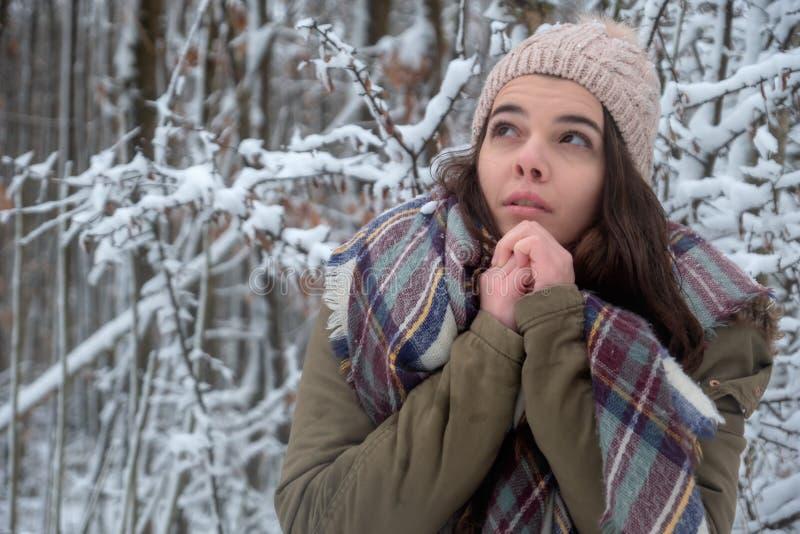 秀丽快乐的模型寒冷在冬天公园 美好的年轻女性自然,享受自然 库存图片