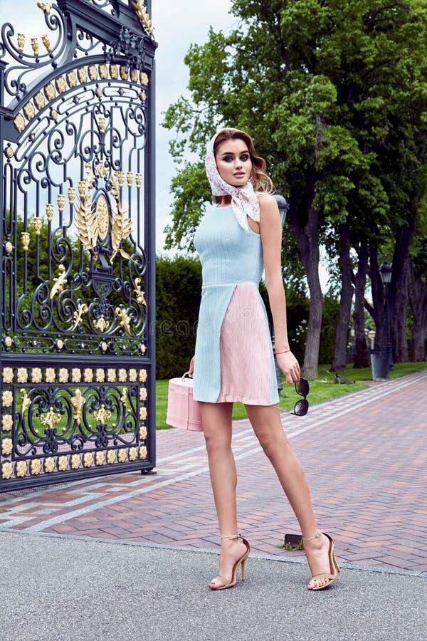 秀丽性感的妇女时装模特儿魅力样式穿衣 免版税库存照片