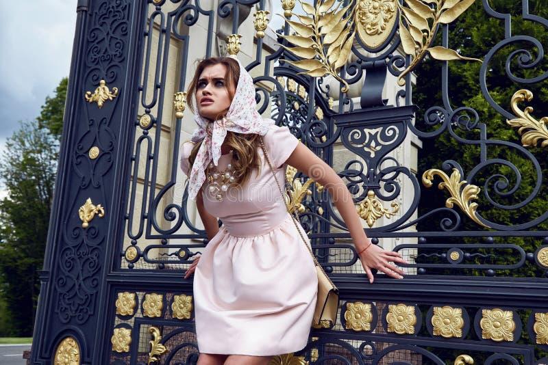 秀丽性感的妇女时装模特儿魅力样式穿衣 库存图片