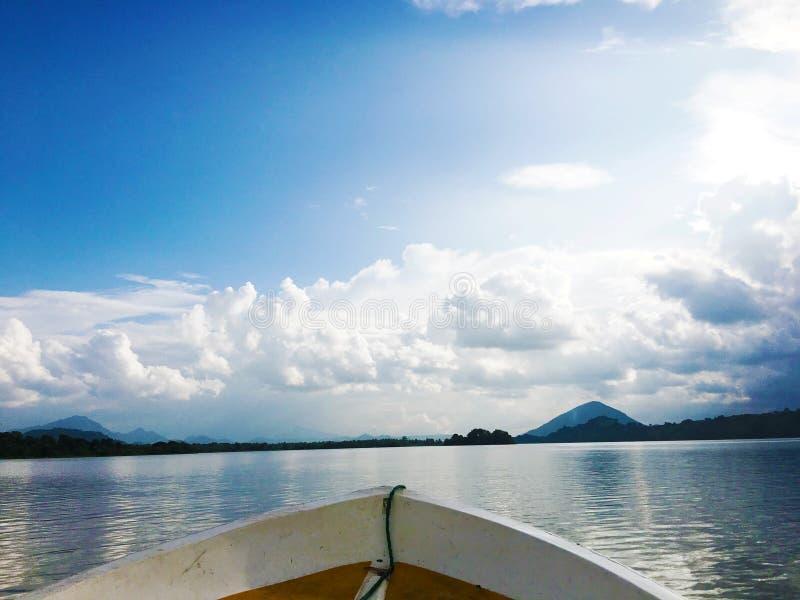 秀丽斯里兰卡自然 免版税库存图片