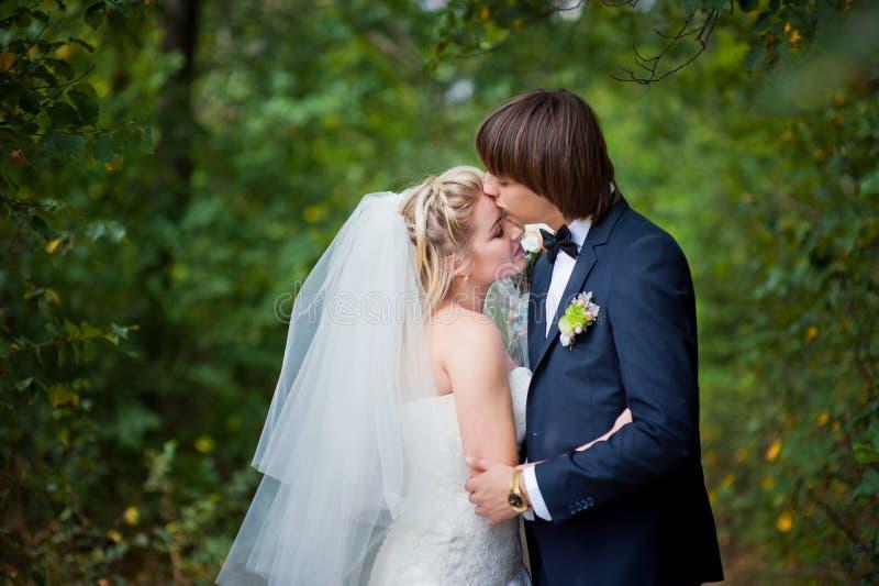 秀丽新娘和新郎 免版税图库摄影