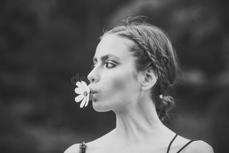 秀丽时装模特儿女孩 塑造查找 有雏菊花的妇女在嘴 免版税库存图片