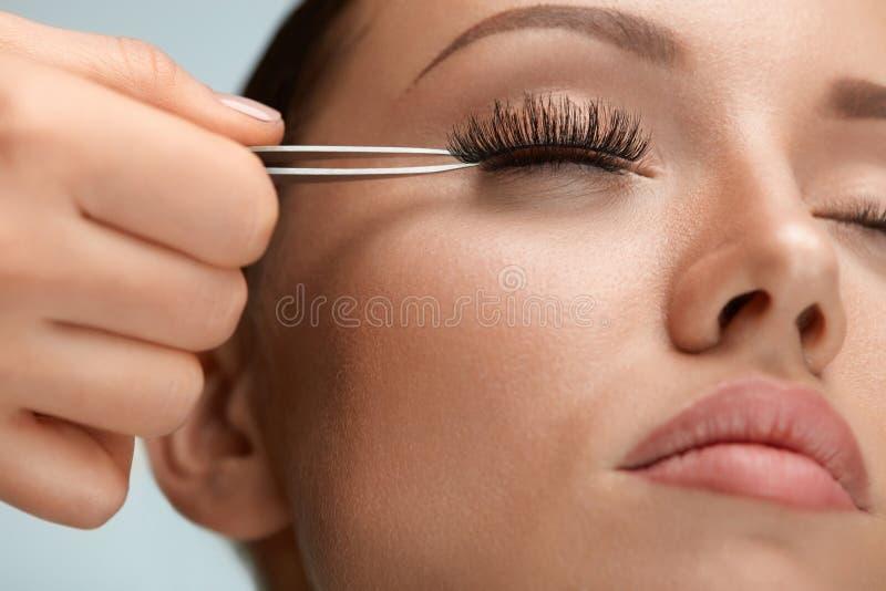 秀丽构成 应用有镊子的妇女黑假睫毛 免版税图库摄影