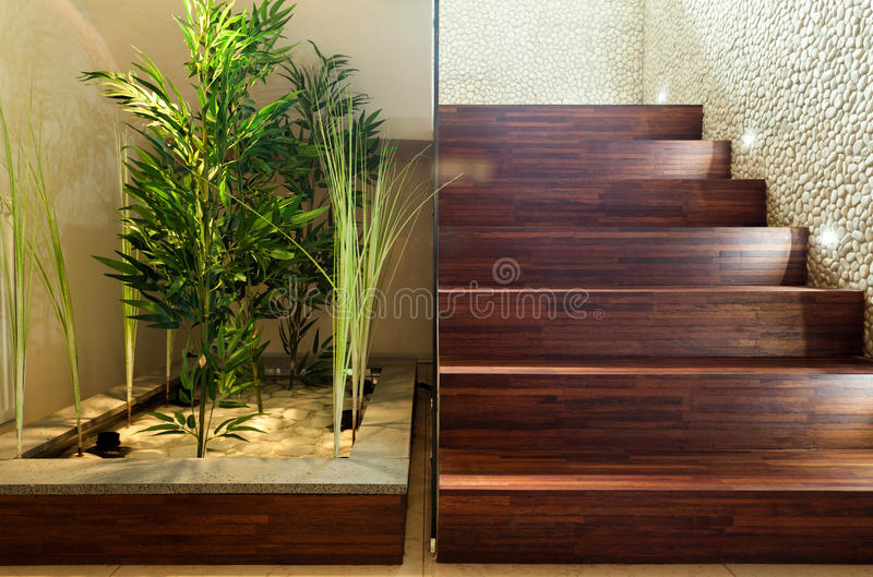 秀丽植物在大厅里 库存图片