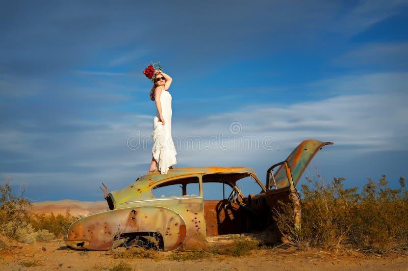秀丽沙漠 库存照片