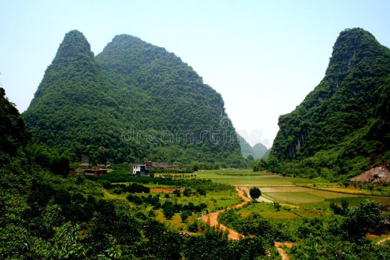 秀丽的桂林小山稻 免版税库存照片