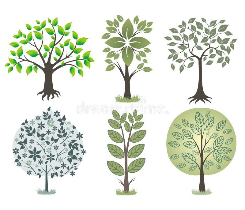 秀丽结构树 皇族释放例证