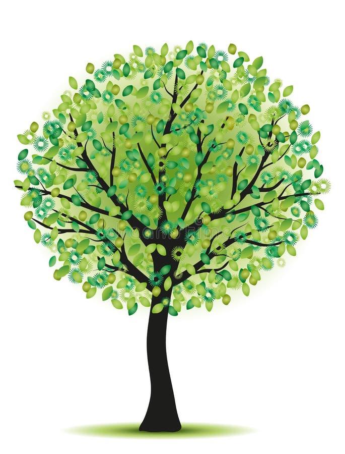 秀丽绿色结构树 皇族释放例证