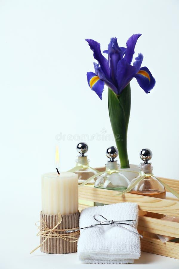 秀丽蜡烛花上油疗法毛巾处理 库存图片