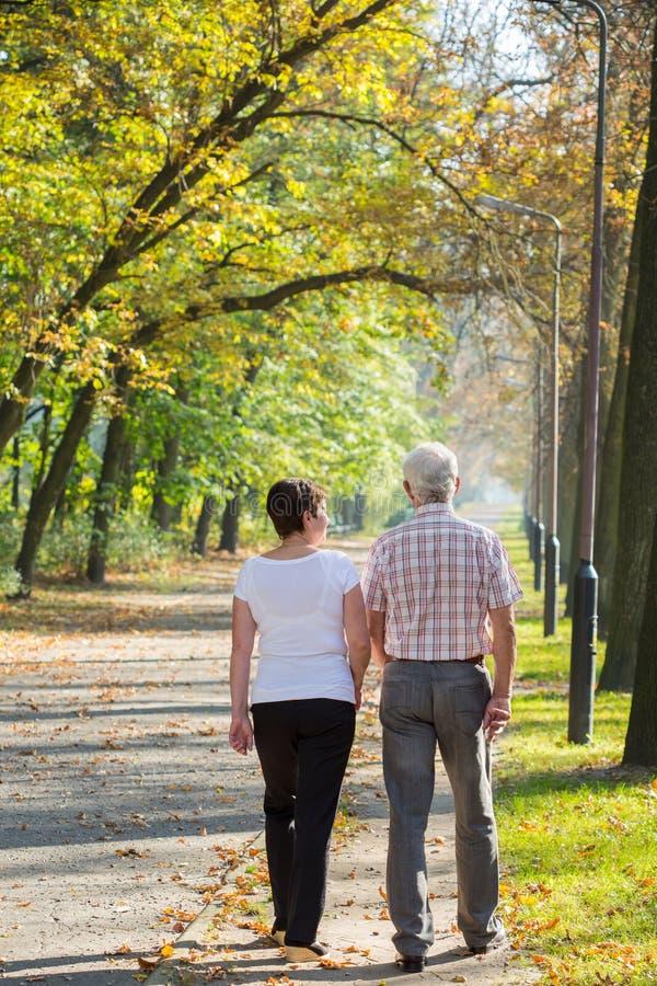 秀丽道路在公园 免版税库存图片
