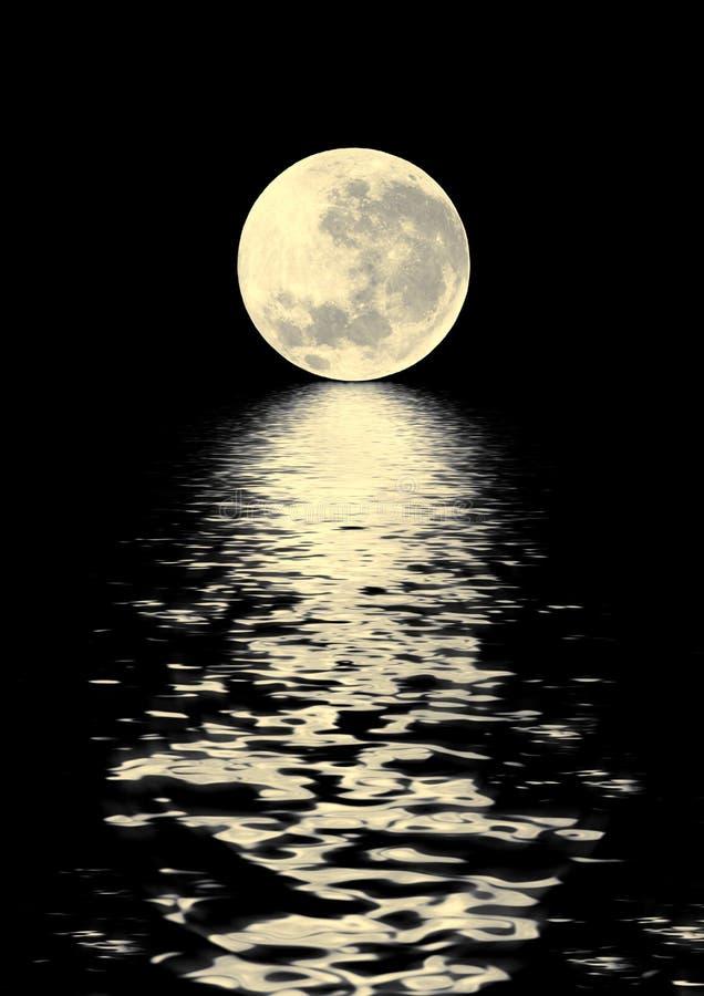 秀丽金黄月亮 图库摄影