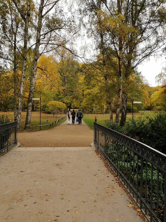 私有亲密的婚礼在一金黄秋天天在柏林 库存图片