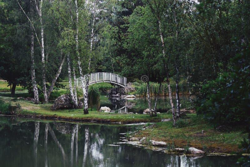 私有湖 库存照片