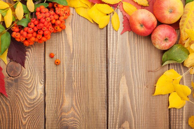 秋叶、花楸浆果和苹果在木背景 免版税库存图片
