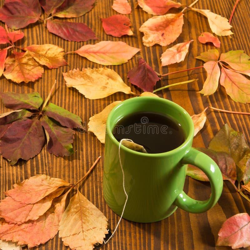 秋叶和茶杯在木背景 库存图片