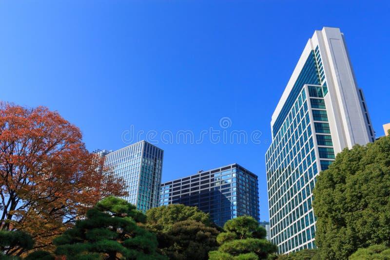 秋叶在Hamarikyu庭院,东京里 免版税库存图片