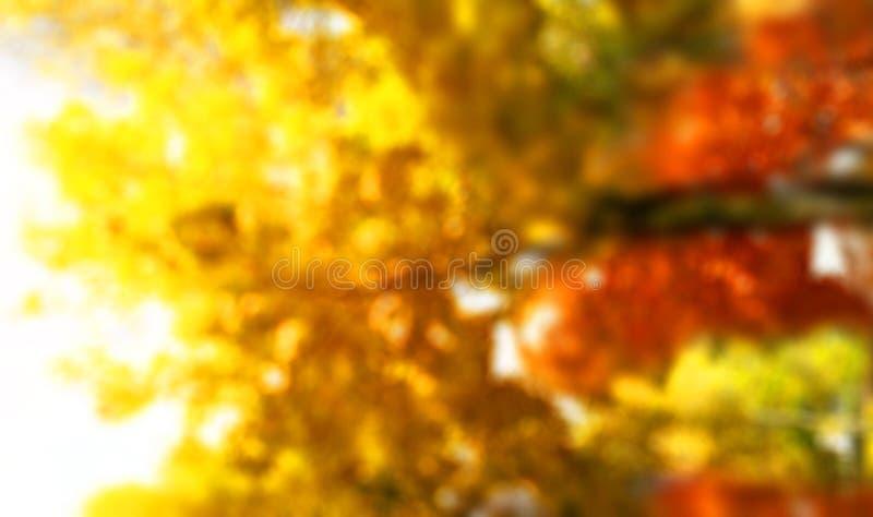 秋叶弄脏了抽象五颜六色的背景 免版税图库摄影