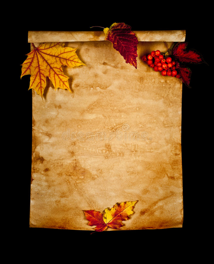 秋叶注意老纸张 库存照片