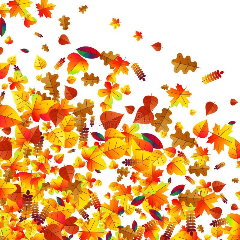 秋叶疏散背景 橡木、槭树和花揪 向量例证