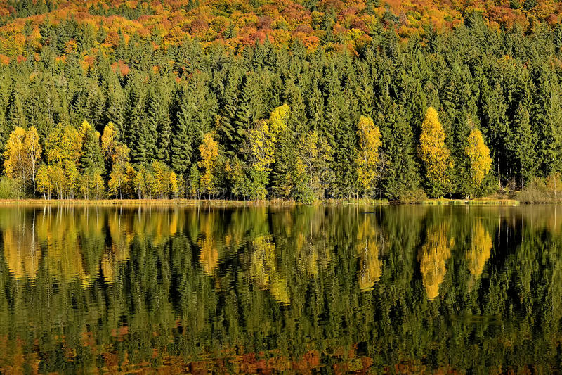 秋叶的湖反射 五颜六色的秋天叶子熔铸它的在镇静水的反射 库存图片
