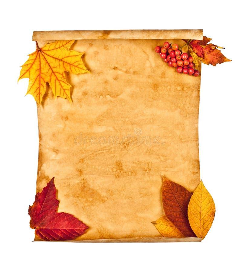 秋叶附注老纸张 库存照片