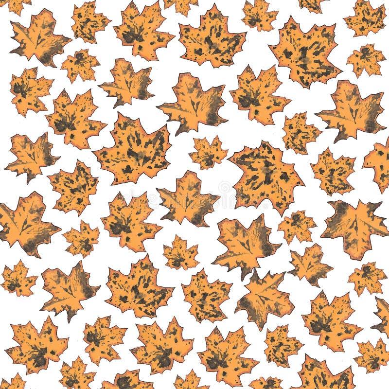 秋叶Putternv  枫叶印刷品  肮脏的污点 免版税图库摄影