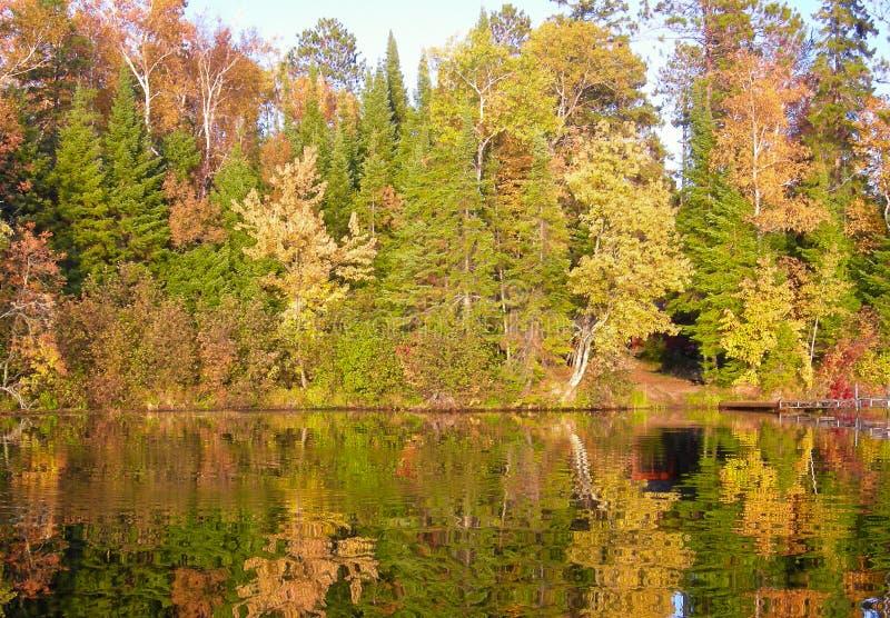 秋天上色了反射在河水的树 免版税库存照片