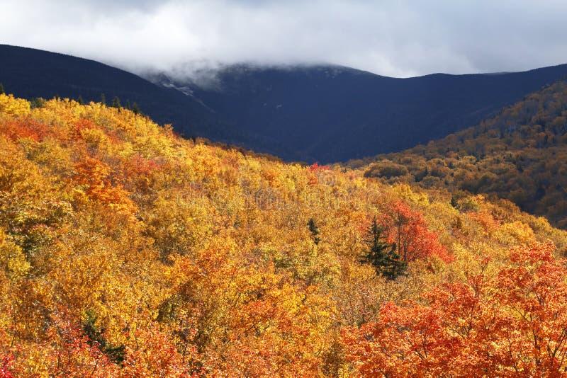 秋天上色山 库存照片