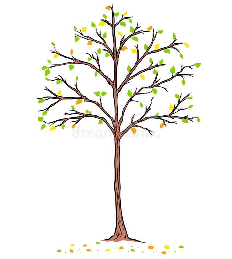 秋天下落的树黄色留下动画片 库存例证