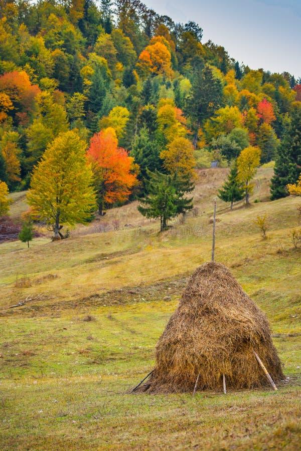 秋天与五颜六色的森林的风景风景,木篱芭和干草谷仓在Tihuta通过 图库摄影