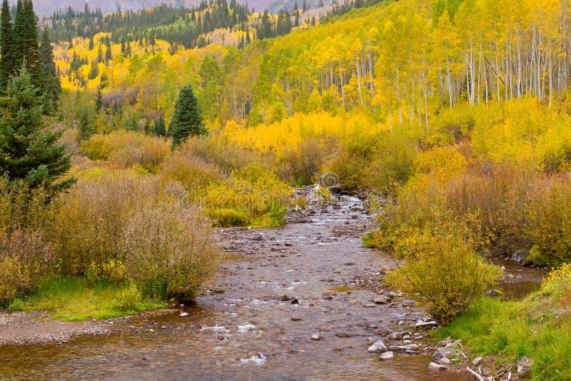 秋天与森林和小河的山风景在一多云天 库存照片