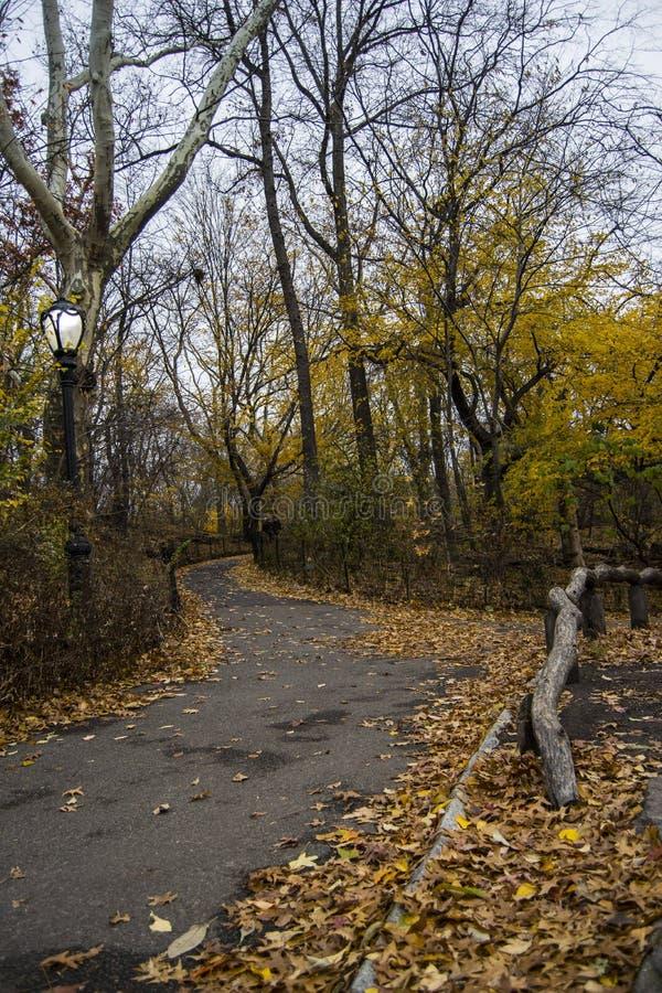 秋天中央公园 曼哈顿中城纽约 库存照片
