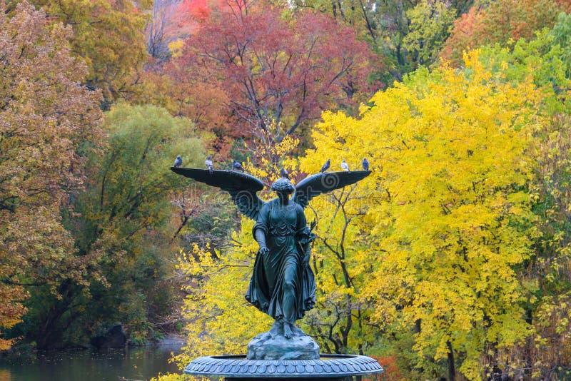 秋天中央公园 图库摄影
