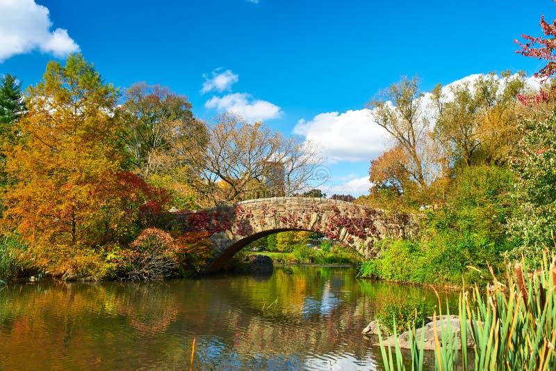秋天中心城市新的公园约克 图库摄影