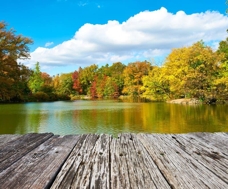 秋天中心城市新的公园约克 库存照片
