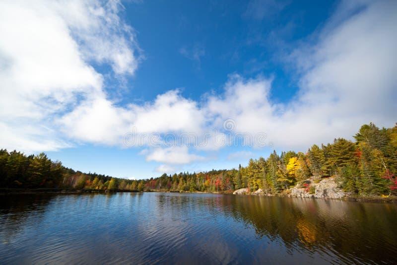 秋天五颜六色的森林湖 免版税库存照片