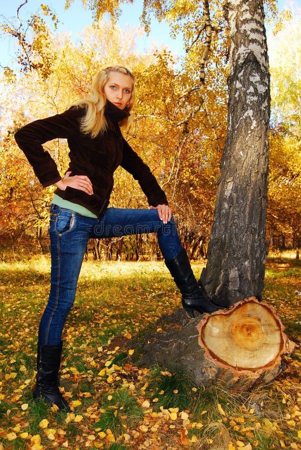 秋天公园俏丽的妇女 免版税库存照片