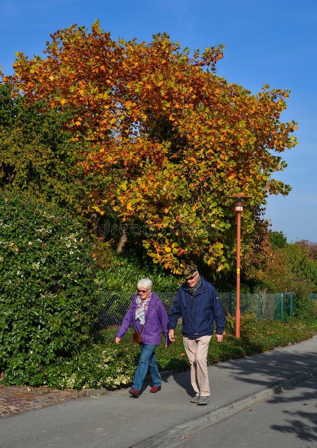 秋天公园在琉森,瑞士 库存图片