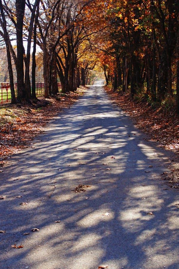 秋天农村路在马国家 库存图片