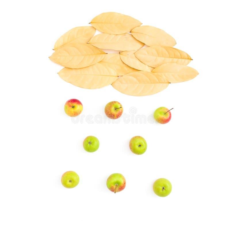 秋天创造性构成 云彩由秋天制成烘干了苹果果子叶子和下落在白色背景的 平的位置,顶视图 库存图片