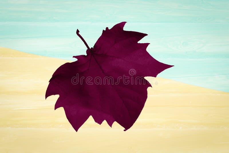 秋天到达 秋天背景 平的位置 免版税库存图片