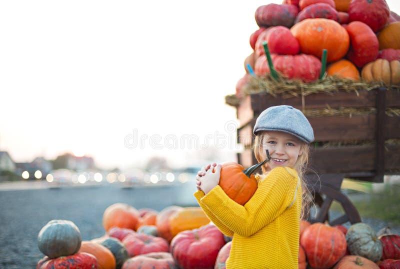 秋天南瓜补丁背景的愉快的女孩 r 定调子在减速火箭的样式 免版税库存图片