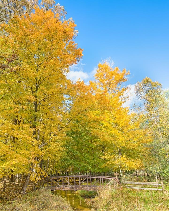 秋天反射,胭脂河,阶段自然地区,特洛伊, MI 库存图片