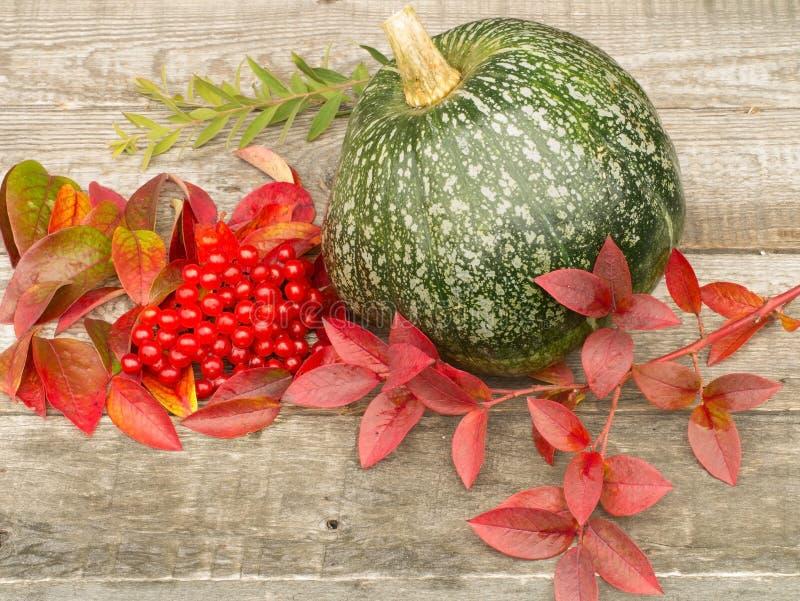 秋天叶子、莓果和南瓜 免版税图库摄影