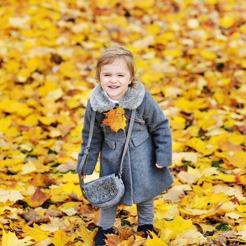 秋天叶子的逗人喜爱的小女孩在公园 免版税库存照片