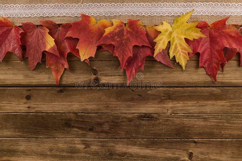 秋天和秋天在一张木桌上的枫叶装饰 免版税图库摄影