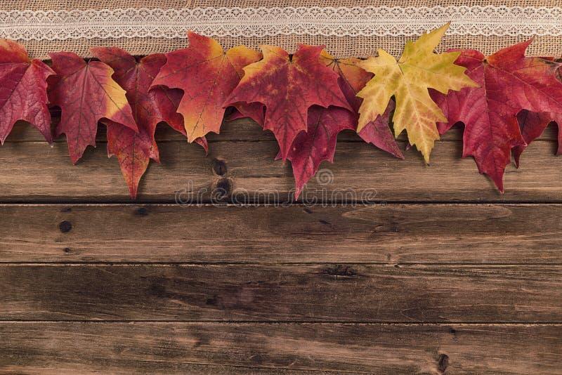 秋天和秋天在一张木桌上的枫叶装饰 免版税库存照片