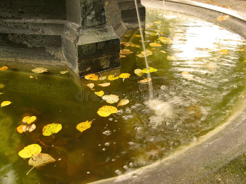 秋天喷泉叶子 库存照片